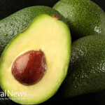 Avocado-Nutrition-Seeds-Food-Vegetable