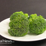 Broccoli-On-A-White-Plate-Crowns-Vegetables
