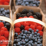 Bulk-Containers-Fruit-Raspberries-Blueberries