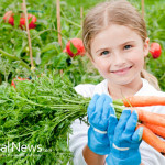 Child-In-Garden-Planting-Vegetables-Carrots