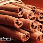 Cinnamon-Sticks-Tied-Twine-Closeup