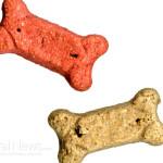 Dog-Treat-Biscuit-Food