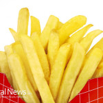 French-Fries-Junk-Food-Sleeve