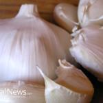 Garlic-Food-Cloves