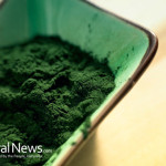 Green-Powder-Spirulina-Mix-Scoop