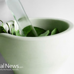 Herbs-Plants-Leave-Medicine-Grind