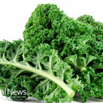 Kale-Vegetables