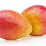 Mango-Fruit-On-White