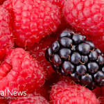 Raspberries-Blackberry-Fruit-Food-Organic