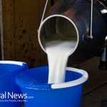 Raw-Milk-Pour-Buckets
