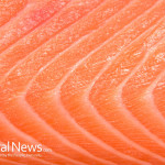 Salmon-Pink-Fish-Flesh