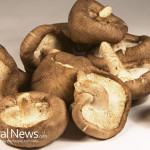 Shitake-Mushrooms-Fungus-Food