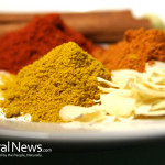 Spices-Plate