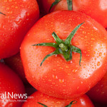 Tomatoes-Vine-Bunch