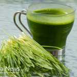 Wheat-Grass-Juice
