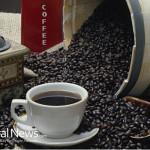 Coffee-Beans-Bulk-Grinder-Cup