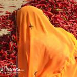 India-Pepper