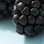 Two-Blackberries-Fruit-Close-Up